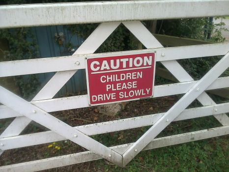 Driving School - Sign literally on a School's Gate by Destiny3000
