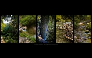 Wallpaper - Nature 1 by cgphotopro