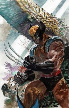 Wolverine in Forest by ardian-syaf