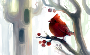 Cardinal by fancypigeon
