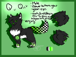 Q reference :PC: by DarkWolfArtist