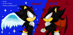Good or Evil by ShadowTheHedgehog444