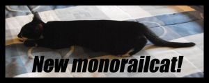 New-monorailcat by Jadeitor