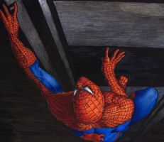 Spider-man by Meador