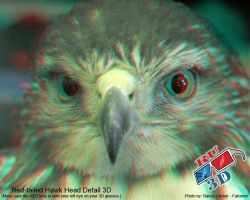 Isabeau anaglyph 1 by redtailhawker