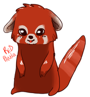 red panda by ches-kyu