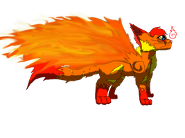 Blitz the Phoenix Cat by SuperSonicFireDragon