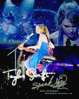 20111221 Taylor Swift by EdwardHuaBin