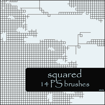 squared brushes by szuia
