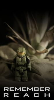 Remember Reach by superscabo