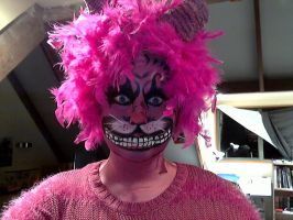 Cheshire cat Halloween make-up! by Blueberrystarbubbles