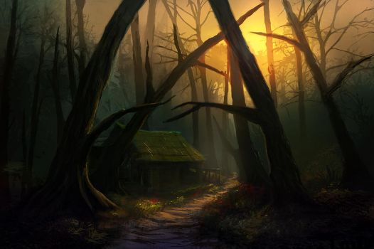 Forest by Edli