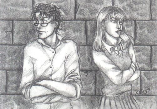 +HP+ . Lovers by LadyBelial