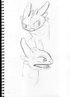 Toothless Sketch Dump by 11meister
