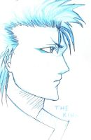 grimmjow by MyAbsentRomance