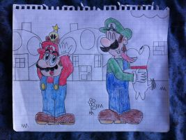 Mario And Luigi's Companions by PrincessPuccadomiNyo