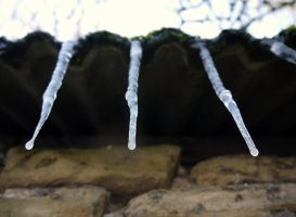 icicles by HumbleBeez