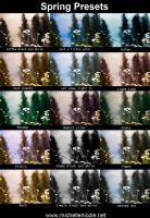 Spring Presets for ACR by chupla