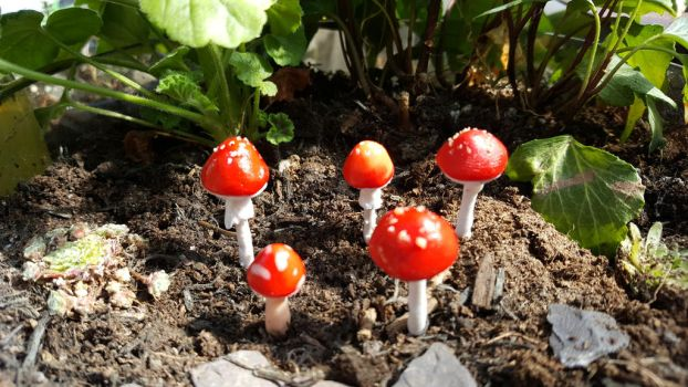 Traditional Toadstools/Mushrooms by BlodynBach