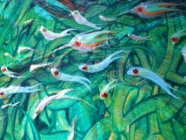 Fish - Detail 7 by Hoon-King