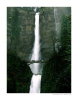 Multnomah Falls by illmatic1