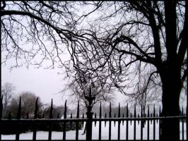 Gothic Fence II by Red--Roses