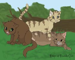 Elders of ThunderClan by moSHypants