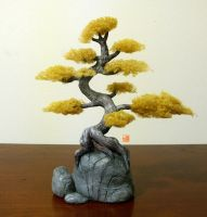Bonsai sculpture by Sheharzad-Arshad
