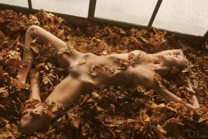 Sleeping With Leaves by artofdan70