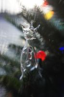 Lensbaby Parents Tree VII by LDFranklin