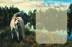 WOSe: Winchester Equestrian by Vesperity