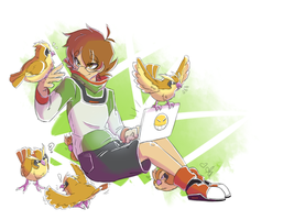 Pidge and Pidgeys by AR-ameth