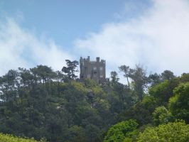 House On The Hill, Sintra, Portugal by SrTw