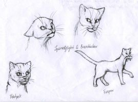Warriors Medley I by Bronze100