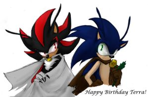 Giftart - AU Sonic and Shadow by Chaos-Flower