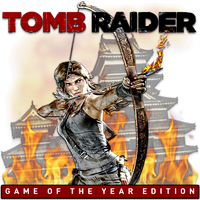Tomb Raider Game Of The Year Edition by POOTERMAN