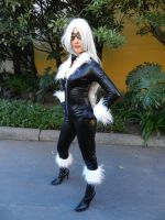 BLACK CAT by javisanta
