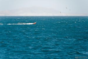 Boat, sea, birds and mountain by Yupa