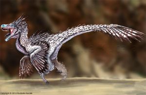 Velociraptor Reconstructed by TheDragonofDoom