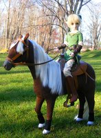 Link and Epona by Volkihar