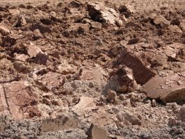Cracked Earth Dirt Texture 03 by FantasyStock