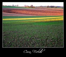 Corn Fields 02 - France by iFab