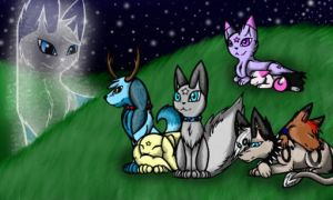 Sparkling Nights    Contest Entry for J-B Pawstep by Fallen-the-Wolfen