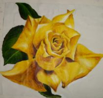 Yellow Rose by Squidges