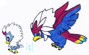Walky Rufflet and Braviary by Porcubird
