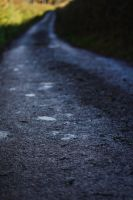 Weathered Lane by dl-p