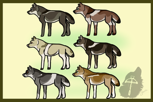 .: Point Natural Wolf Adopts 6:. CLOSED by biggs2