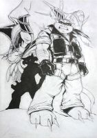 The Swat Kats I by Shraznar