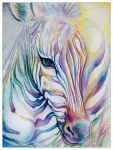 Rainbow Zebra by ladymeow