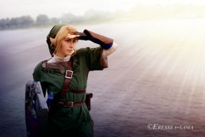 Link Cosplay - Danger In Sight by Eressea-sama